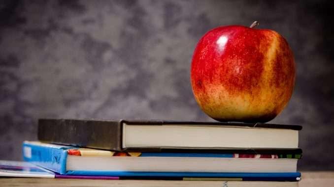 Fragen zu Qualifikation, Ausbildung, Fort- und Weiterbildung